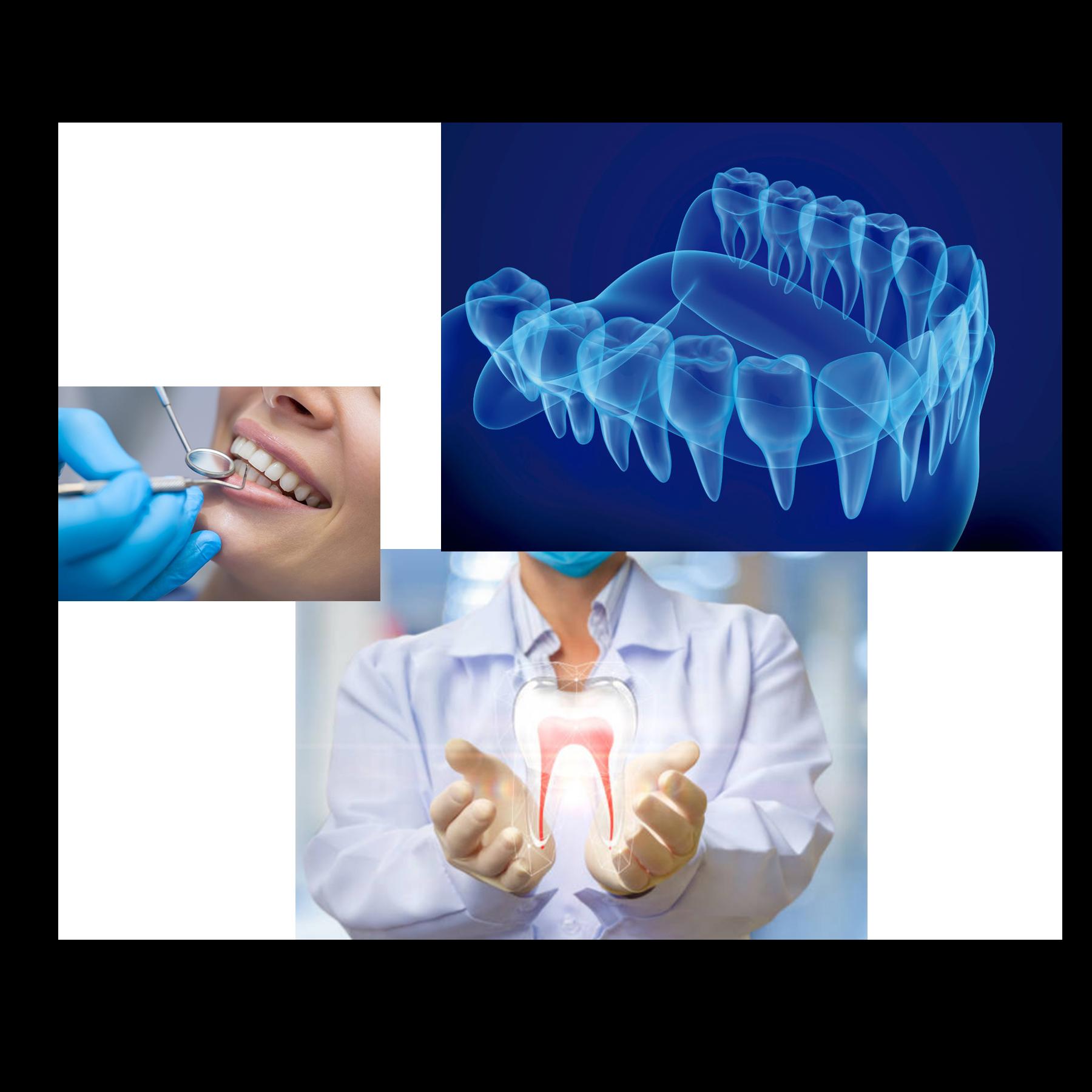 CSA Dental – Centro Independencia Caracol